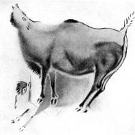 Ревущий бизон. Живописное изображение в Альтамирской пещере