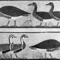 Гуси. Роспись гробницы в Медуме. III династия. Начало 3 тыс. до н. э. Каир. Музей